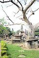 Dutch Cemetery, Chinsurah- The inside general view.jpg