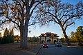 Earliest Sunset of the Year, Talmage, California.jpg