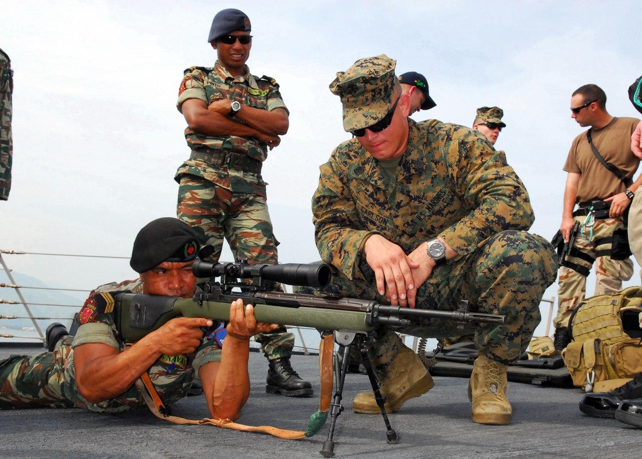 Best Designated Marksman Rifle In The World