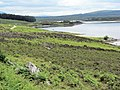 East end of Loch Naver - geograph.org.uk - 491203.jpg