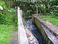 Eastcote Brook - geograph.org.uk - 844469.jpg