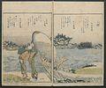 Edo meisho-Famous Sites of Edo MET JIB79 a 005.jpg