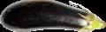 Eggplant 2.png