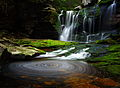 Elakala Waterfalls pub9 - West Virginia - ForestWander.jpg