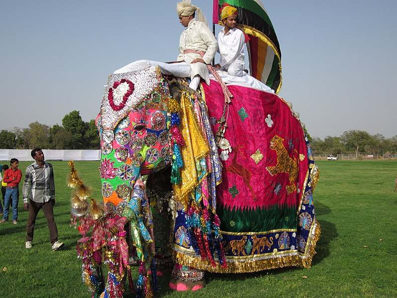 File:Elephant festivel The Elephant Festival is a unique event of the elephants organized on the eve of Holi in Jaipur, the capital of Rajasthan, India - panoramio.jpg