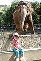Elephantsfrontgirlriodejaneiro.jpg