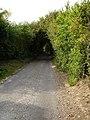 Elverland Lane - geograph.org.uk - 239883.jpg