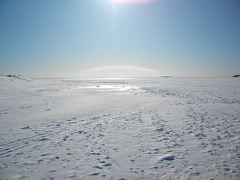 English: Walking on the ice of the Gulf of Fin...