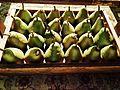 End of summer pears eff.jpg