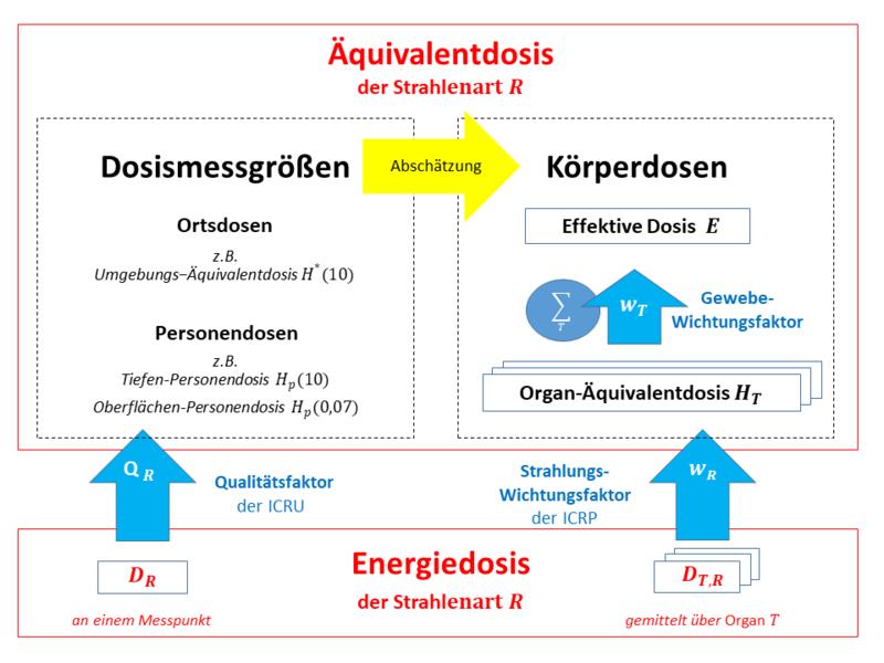 Datei:Energie- und Äquivalentdosis - Dosisbegriffe und Zusammenhänge.png
