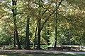 Englischer Garten Herbst-14.jpg