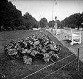 Ensimmäinen maailmansota - N1839 (hkm.HKMS000005-0000015k).jpg