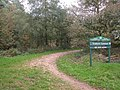 Entrance to Trellech Common - geograph.org.uk - 261133.jpg