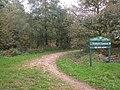 Entrance to Trellech Common - geograph.org.uk - 261133.jpg