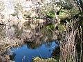 Erquy-Les Lacs bleus.jpg