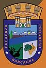Escudo de Nancagua.jpg