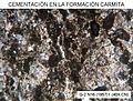 Espacios intergranulares cementados por esparita en grainstone de la Formación Carmita (Cuba, Central).jpg