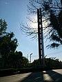 Estela de luz - panoramio (2).jpg