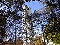 Evang. Kirche Hard - panoramio - Rene Nueesch.jpg