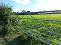 Evening sunshine at Mynydd-bach, Shirenewton - geograph.org.uk - 2061355.jpg