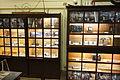 Exhibit cabinet - NTU Heritage Hall of Physics - DSC01142.JPG
