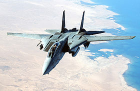 F-14 Tomcat DF-SD-06-03497.jpg