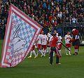 FC Red Bull Salzburg ver SV Ried 24.JPG