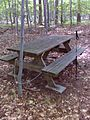 FLT CT6 9.3a mi - Bivouac area w picnic table only, seasonal stream nearby - panoramio.jpg