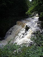 File:Falls of Clyde at Corra Linn - geograph.org.uk - 487867.jpg