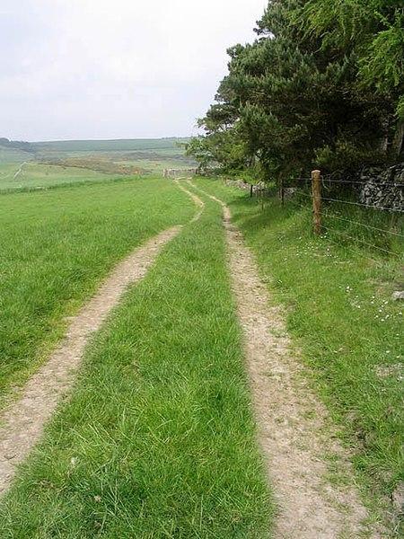 File:Farm track - geograph.org.uk - 462137.jpg