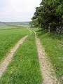 Farm track - geograph.org.uk - 462137.jpg