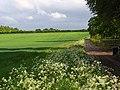 Farmland, Weston Down Cottages - geograph.org.uk - 434627.jpg