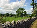 Field near Ballybrittas, Co. Laois - geograph.org.uk - 1390771.jpg