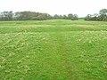Field near Laughton Place - geograph.org.uk - 152296.jpg