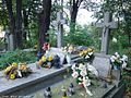 File-Mariavites Cemetery in Lublin 003.JPG