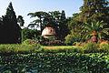 File by Alexander Baranov - Ботанический сад (9457646065).jpg