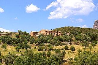 Finca - A finca in Mallorca