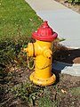 Fire hydrant on Lake St at Parley's Trail, Sugar House, Salt Lake City, Utah, Aug 16.jpg
