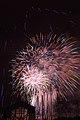 Fireworks - July 4, 2010 (4773753130).jpg
