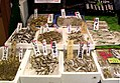 Fish from Lake Biwa for sale at a fish store in Otsu, Shiga, Japan.jpg