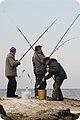 Fishing (3146571907).jpg