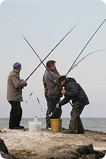 вид рыболовной снасти, 7 букв, сканворд