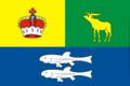 Flag of Goliyanovo (2003).png
