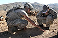 Flickr - The U.S. Army - Checkers- Afghan style.jpg