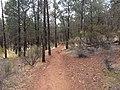 Flinders Ranges SA 5434, Australia - panoramio (195).jpg