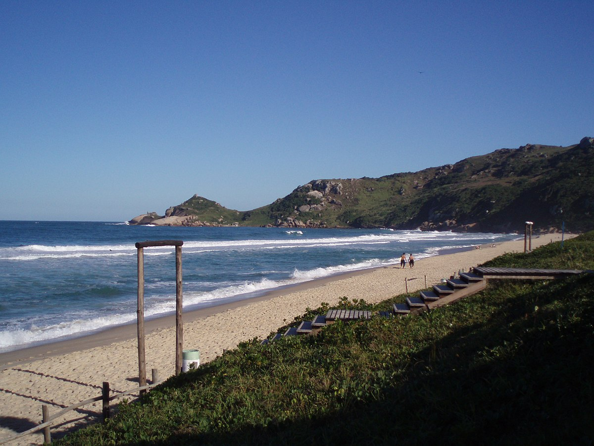 Mole Beach - Wikipedia