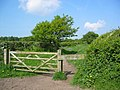 Footpath, Snidley Moor - geograph.org.uk - 84892.jpg