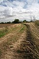 Footpath to Felsham - geograph.org.uk - 1478054.jpg