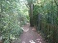 Footpath to Luton Rec Ground - geograph.org.uk - 1459405.jpg