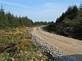 Forestry road, Kintyre Way Walk. - geograph.org.uk - 383283.jpg
